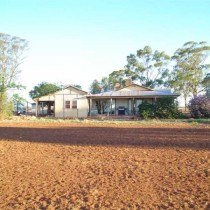 Red Earth Farmland. Condobolin