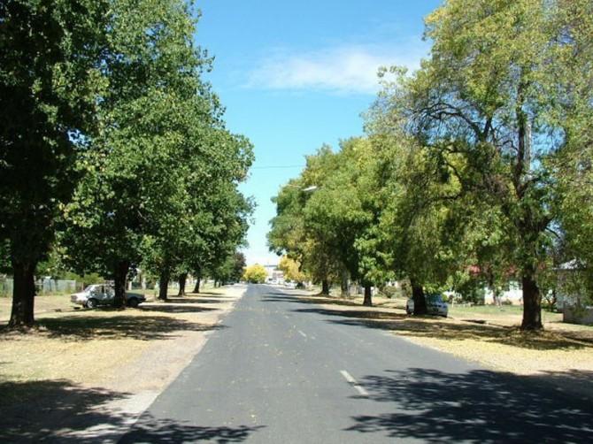 Country boulevard. Cumnock