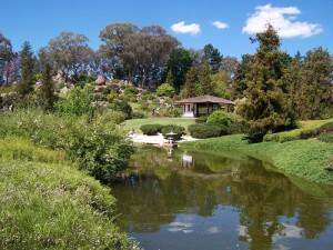 Japanese Gardens. Cowra