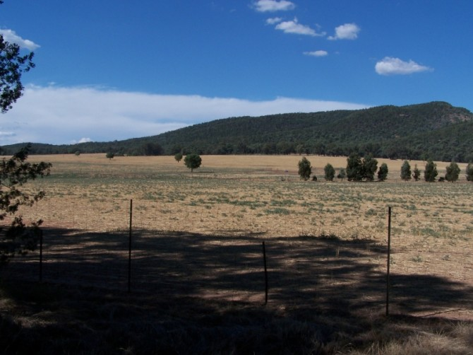 Country landscape. Eugowra