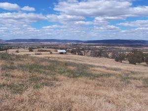 Ridgetop with Panoramic Views. Cowra