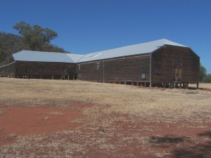 Large Timber Shearing Shed. Naradhan