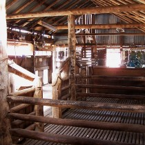 Mid 19th Shearing Shed. Dubbo