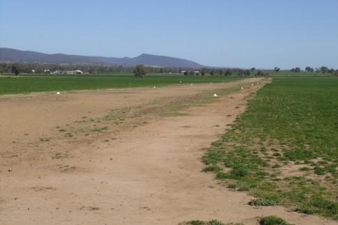 Grass Airstrip. Cowra