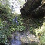 everglades grotto screen central