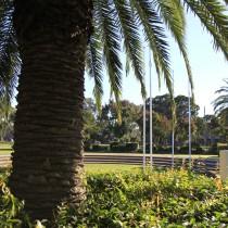 Screen central cabravale Park 3