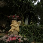 wivenhoe screencentral grotto