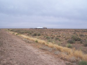 Desolate Stand-alone Pub. One Tree