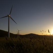 Windfarming Blayney
