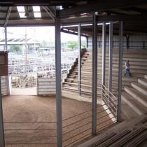 Saleyard complex. Dubbo