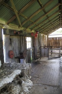 Screen Central Belgenny Farm 11