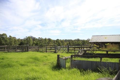 Screen Central Belgenny Farm 4