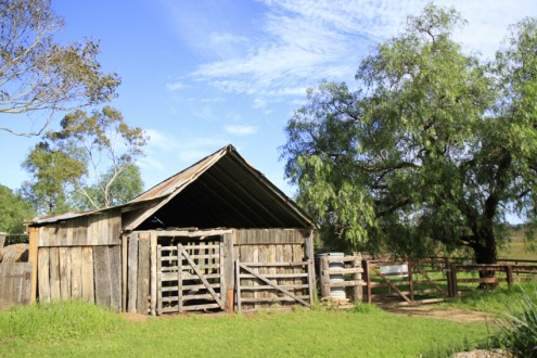 Screen Central community Farm 2