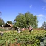 Screen Central community Farm 4