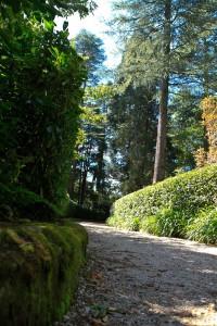 leuralla driveway