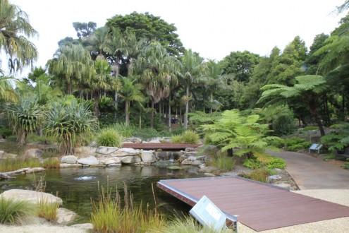 screen central botanic gardens 8