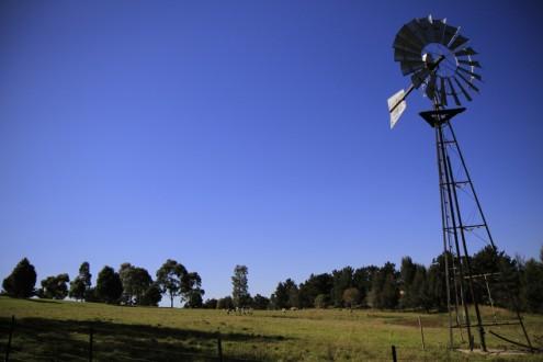 screen central Calmsley Hill Farm 2