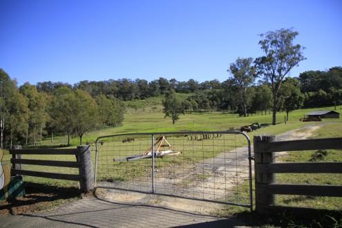 screen central Calmsley Hill Farm 6