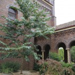 wivenhoe screencentral chapel